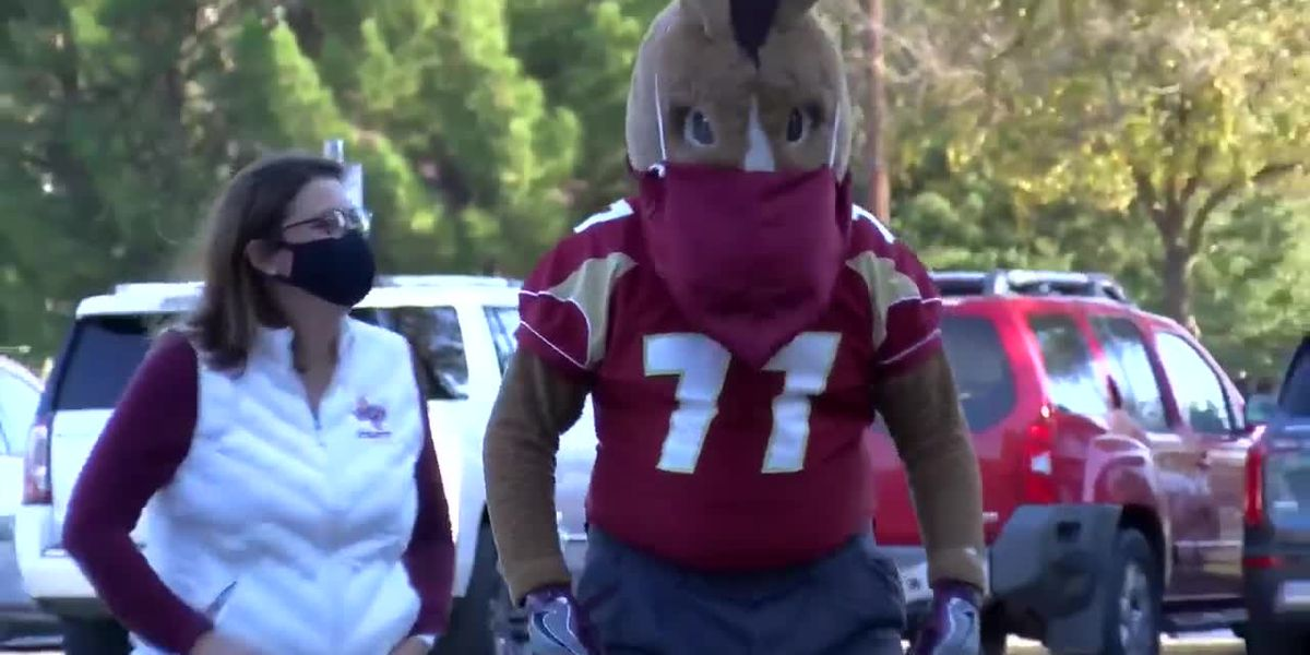 Maverick The Mustang helps donate masks to healthcare workers