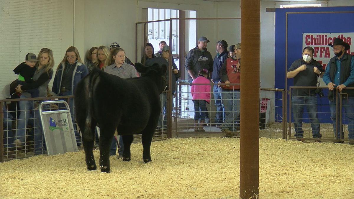 Students raising animals show them at Chillicothe Project Show