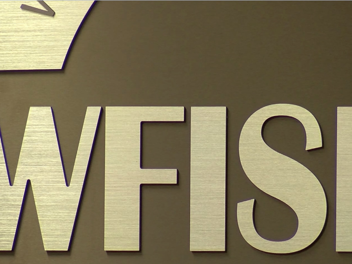 WFISD board members discuss state evaluation