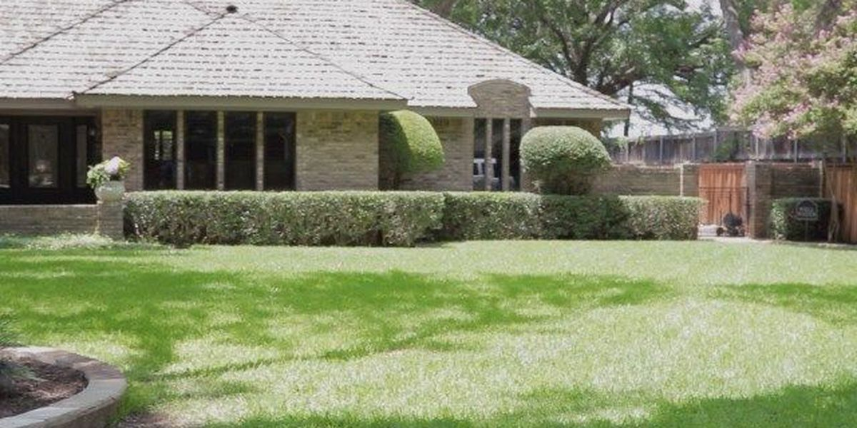 Banking on Business: Total Lawn Care