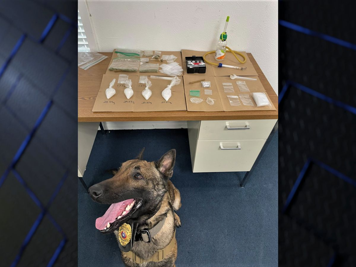 Graham Police Department K-9 Unit makes big impact with drug busts