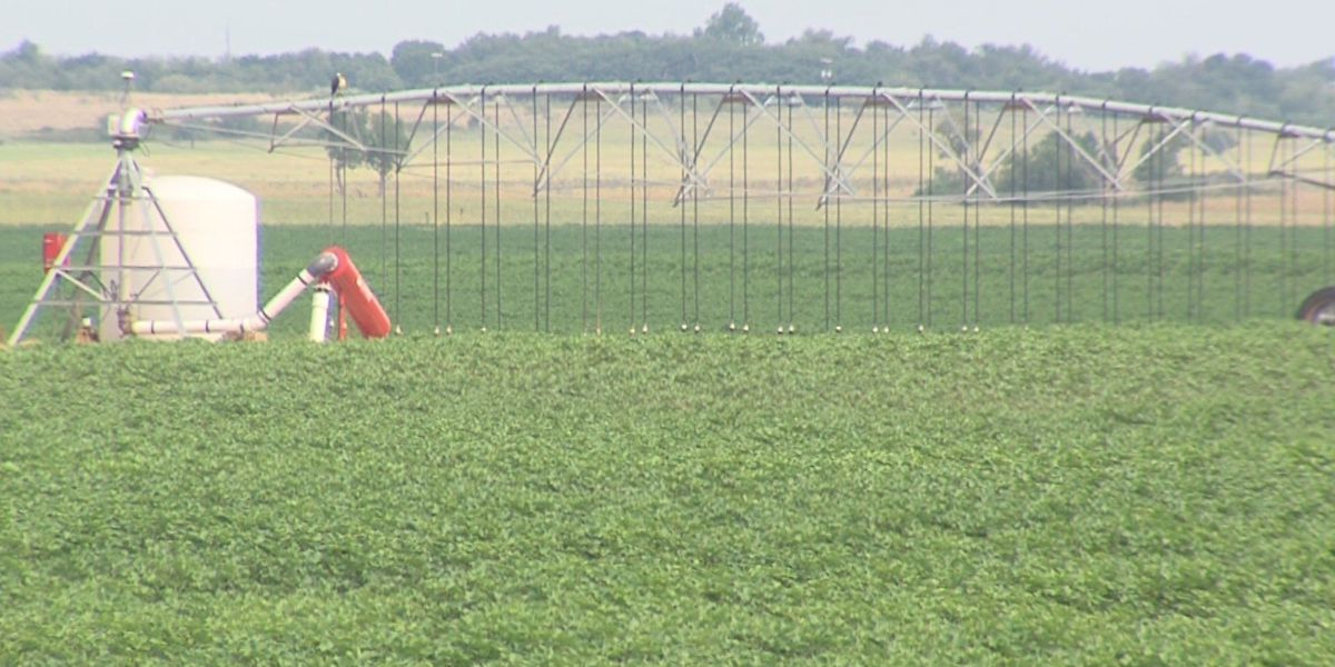 HPT: New technology leads to better water techniques in Wilbarger County