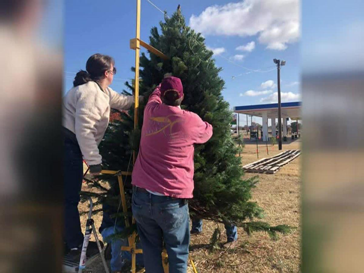 News Channel 6 City Guide: Optimist Club of Wichita Falls annual Christmas Tree Lot