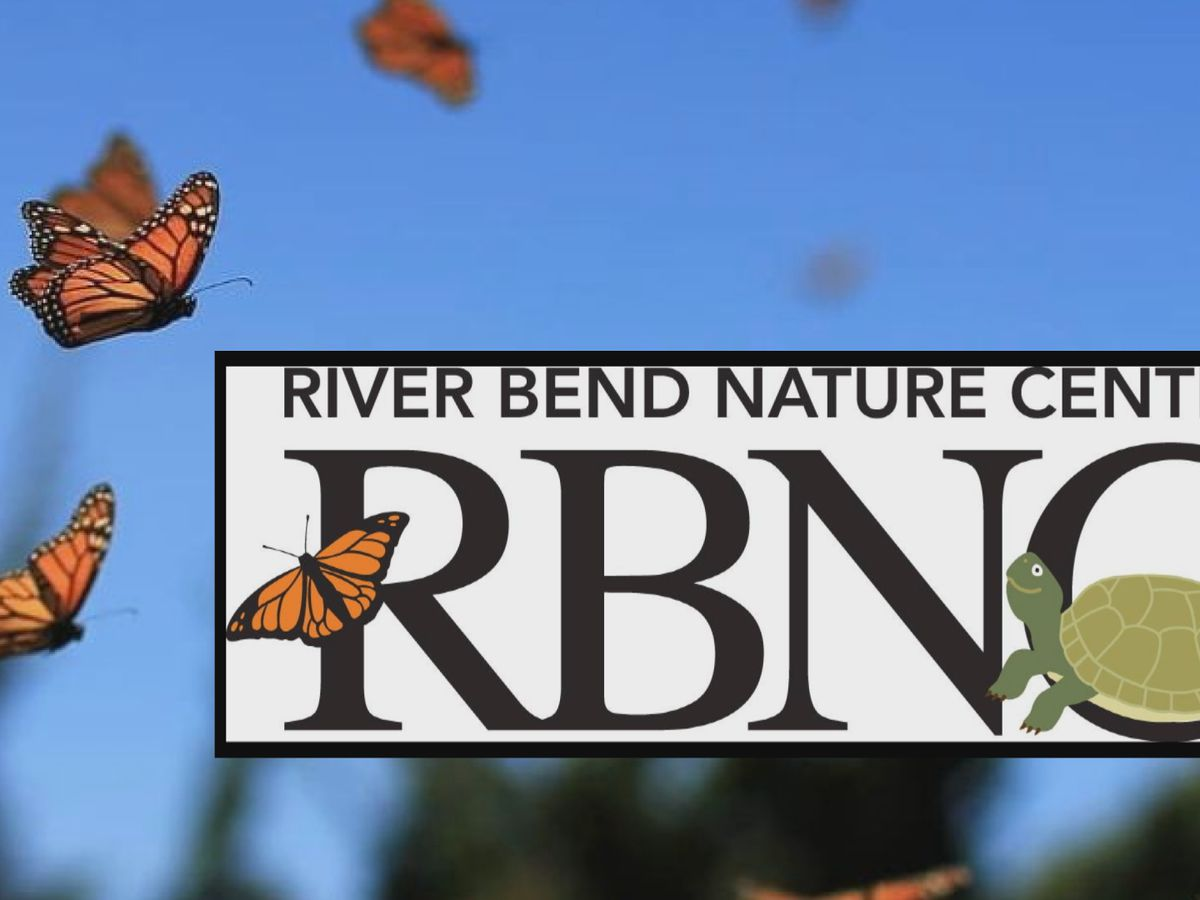 RBNC restarts Science Saturdays with Monarch Madness