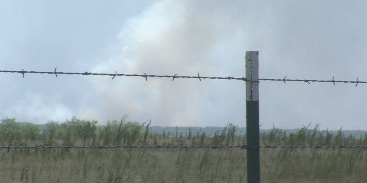 Lightning to blame for 200 acre fire near Dundee