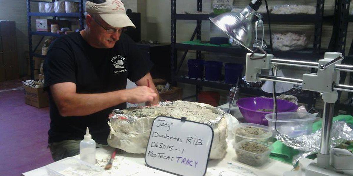 Prehistoric Predators: Fossil Findings in Seymour 'Redefining'