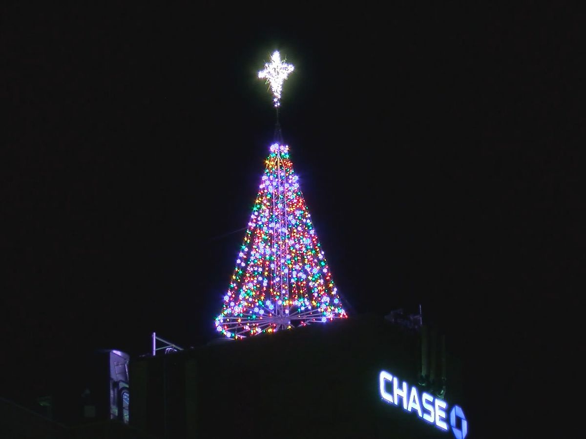 Lighting of the Tree of Lights