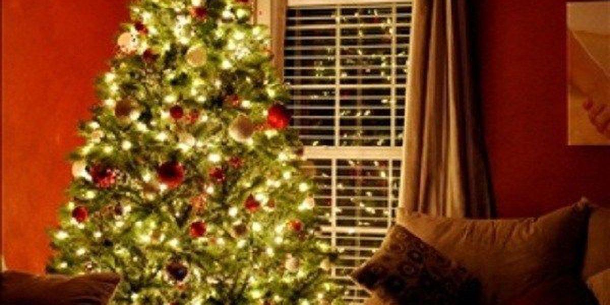 Christmas tree drop-off stations in Wichita Falls