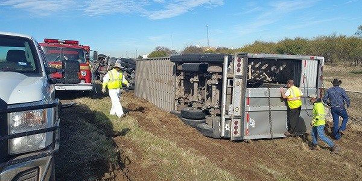 Cattle Trailer Tips Over On Highway 281