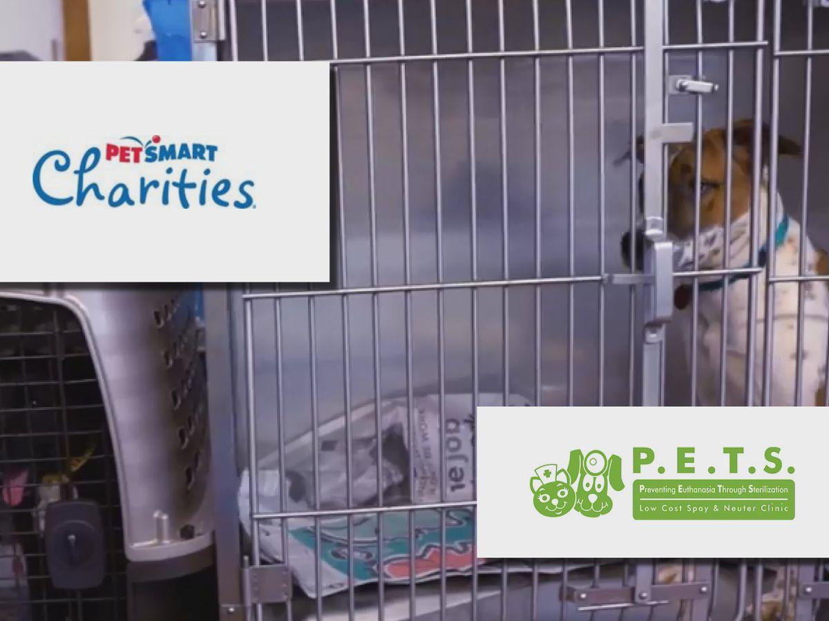 PetSmart Charities awards quarter-million dollar grant to P.E.T.S. Clinic