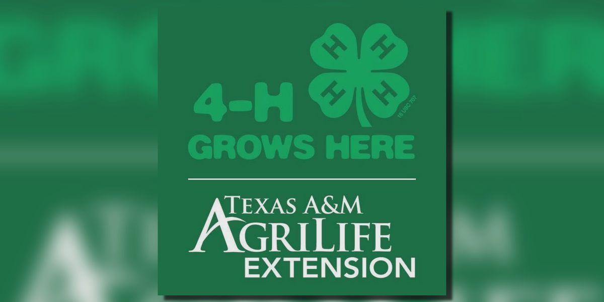 4-H enrollment now open in Wichita County