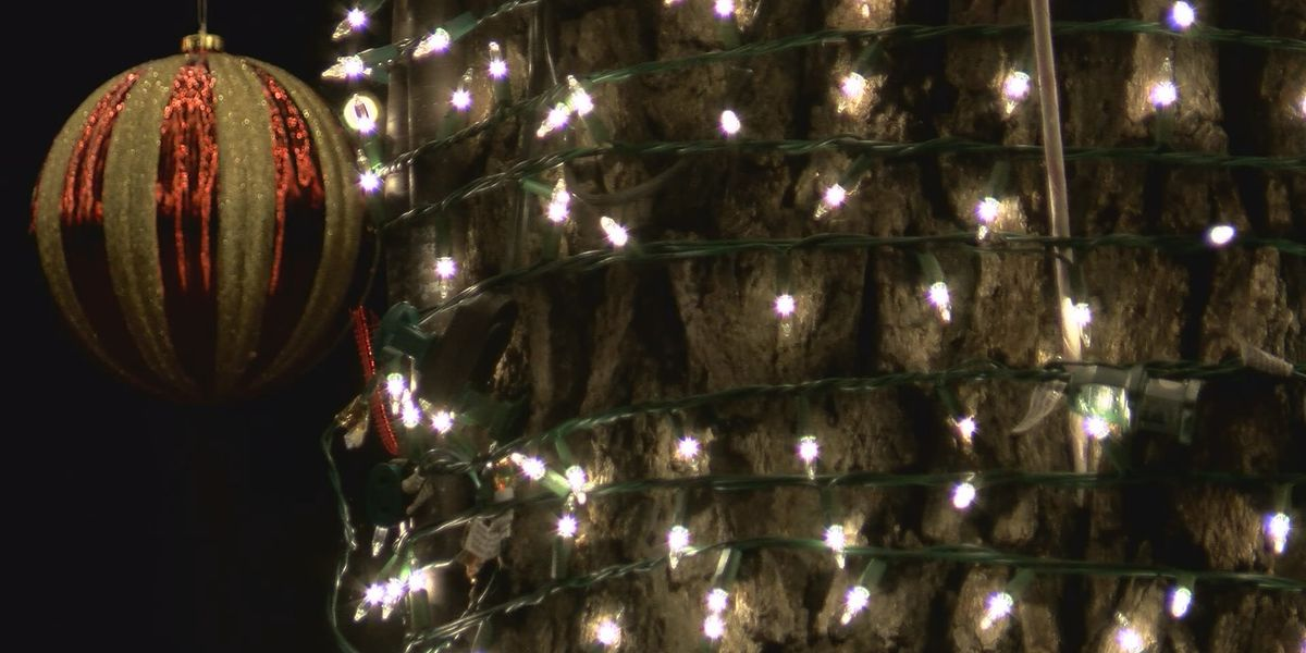 Tricks to keep outdoor Christmas lights shining safety