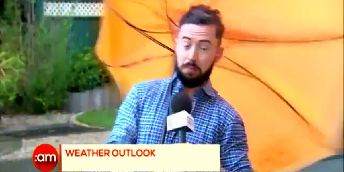 FUNNY VIDEO: Weatherman gets blown off-screen during live weather