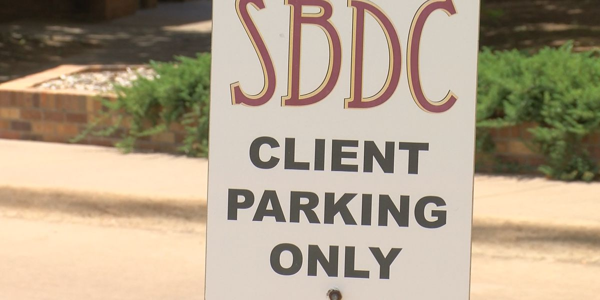 SBDC at MSU now has CARES consultant