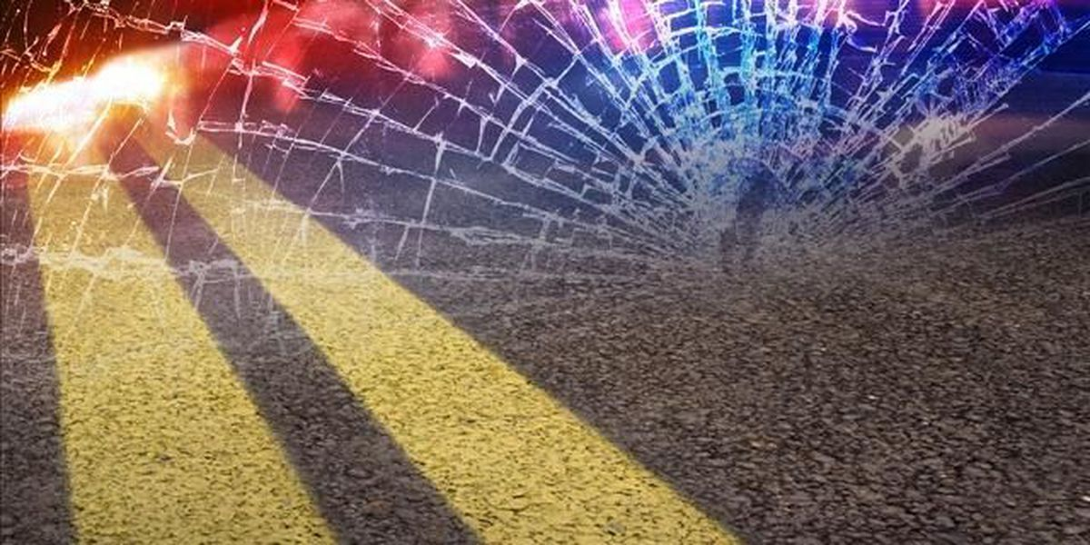 Woman Killed In Car And Cow Collision