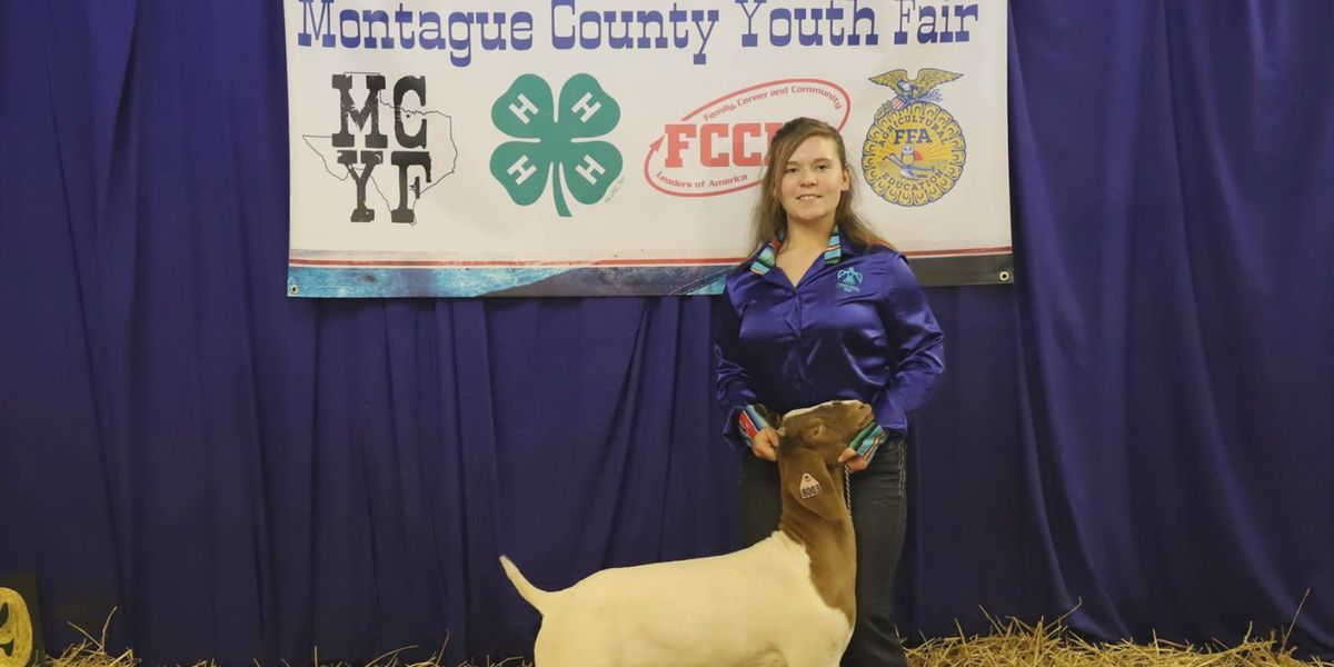 Montague Co. Youth Fair starting Thursday