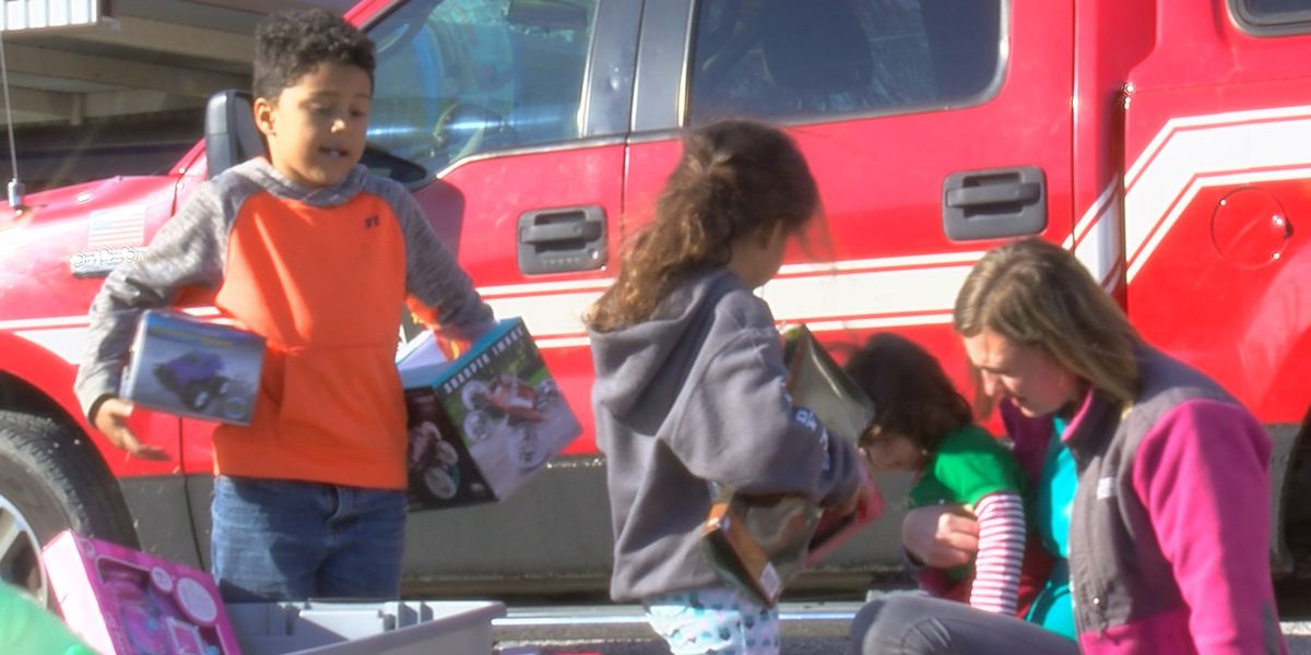 Burk VFD hide toys from the Grinch
