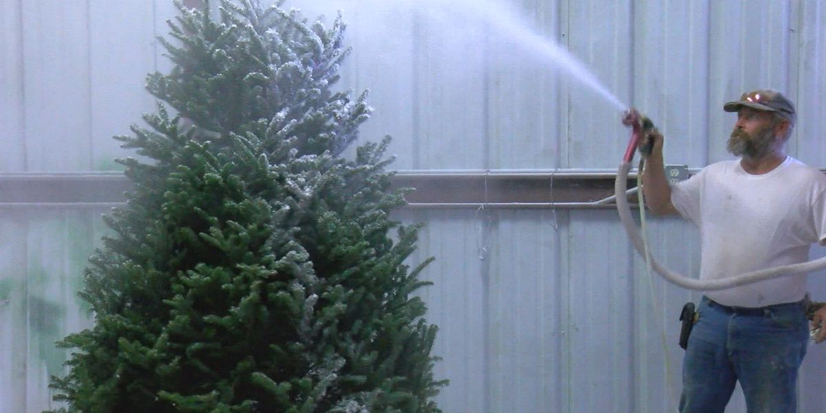 Home safety tips for the holidays