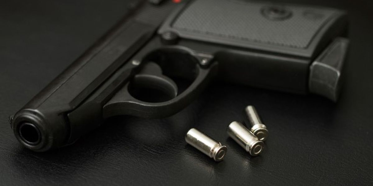 Man fatally shoots wife after mistaking her for intruder