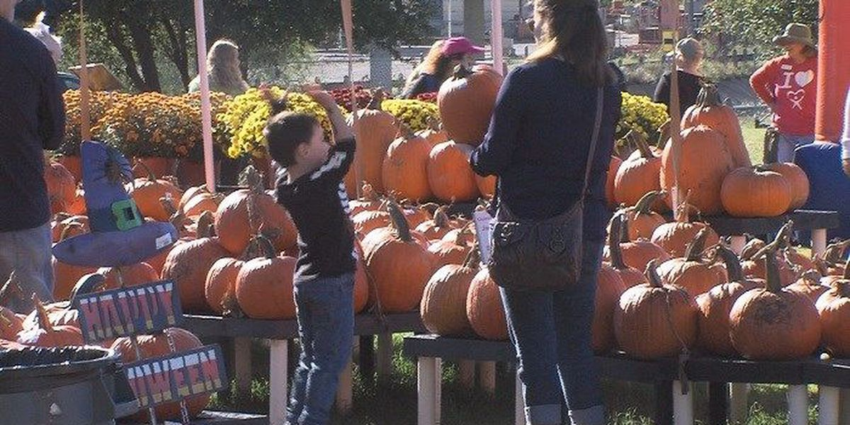 Fall weather provided perfect atmosphere for Pumpkin Fest