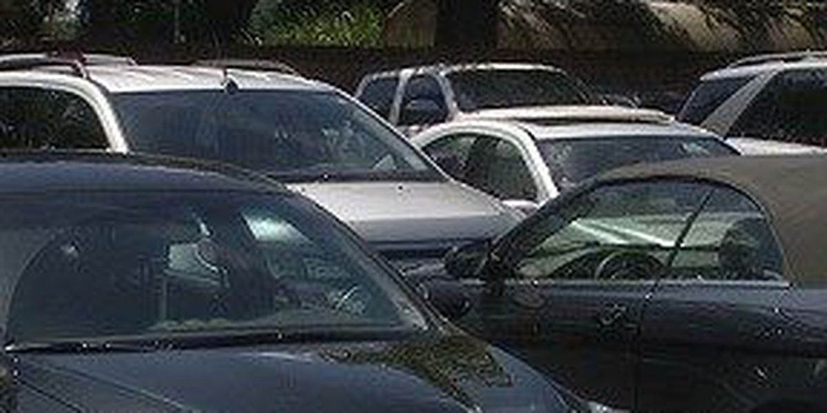 Texas infant dies after being left in car