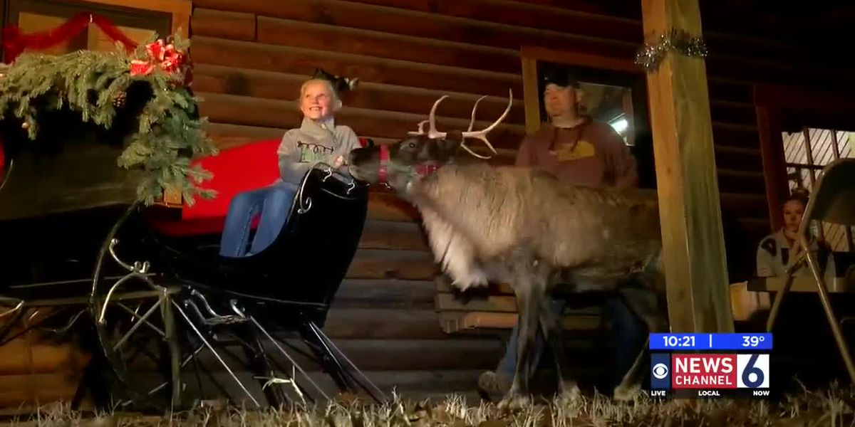 Children enjoy Reindeer Games event at Lucy Park