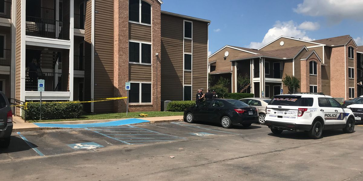 Affidavit provides more information into apartment complex shooting