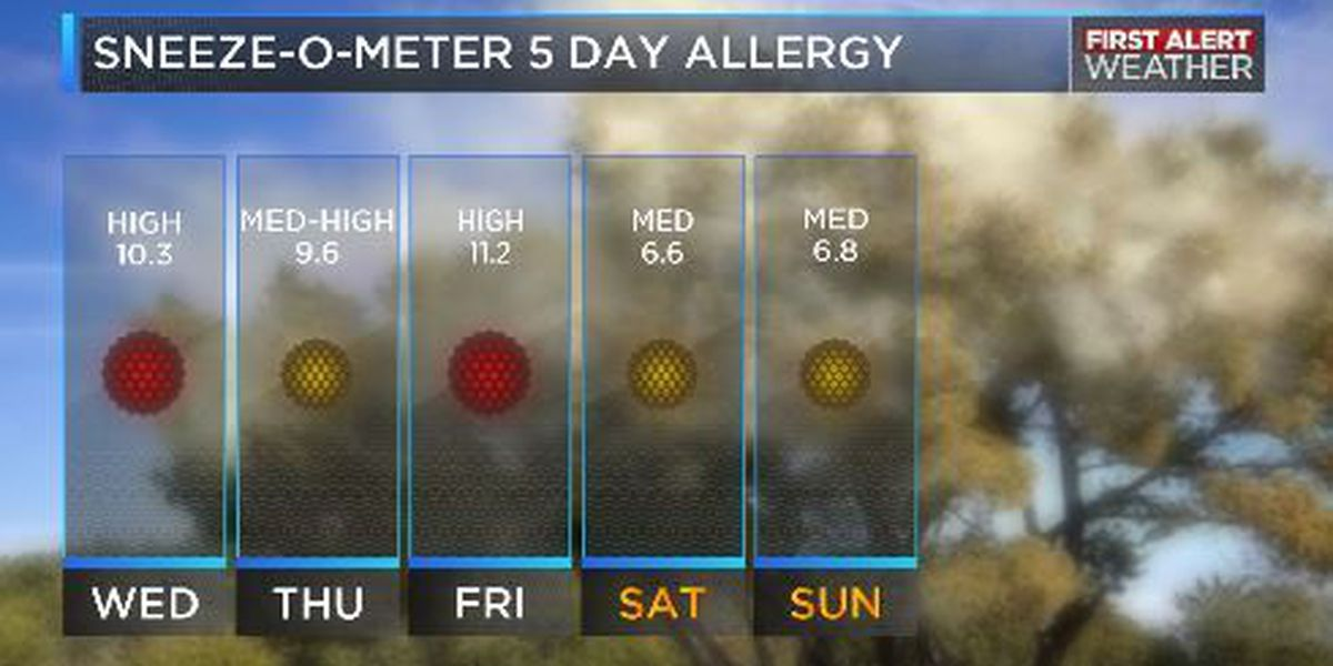 High Pollen Count in Texas and Oklahoma.