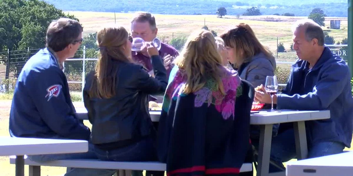 News Channel 6 City Guide - Blue Ostrich Winery & Vineyard