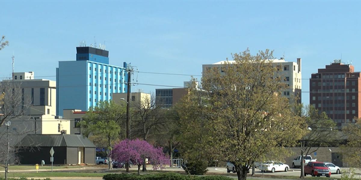 Take part in the Wichita Falls Economic Development Strategy Community Survey