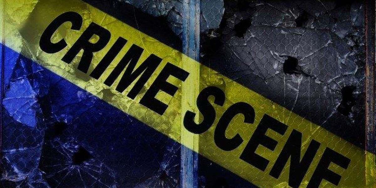 Florida woman bites intruder who forced his way into home