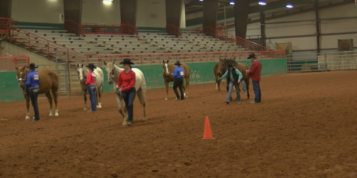 Texoma kids show off prized animals