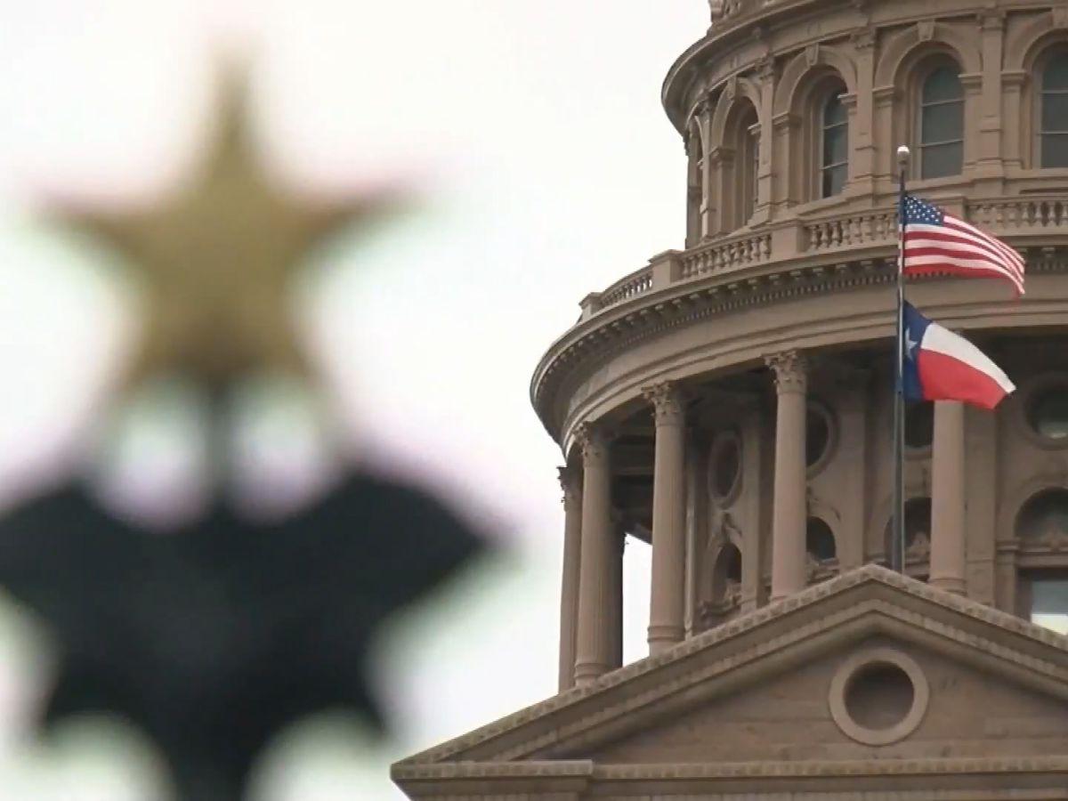 TX Senator Drew Springer proposes ERCOT bill