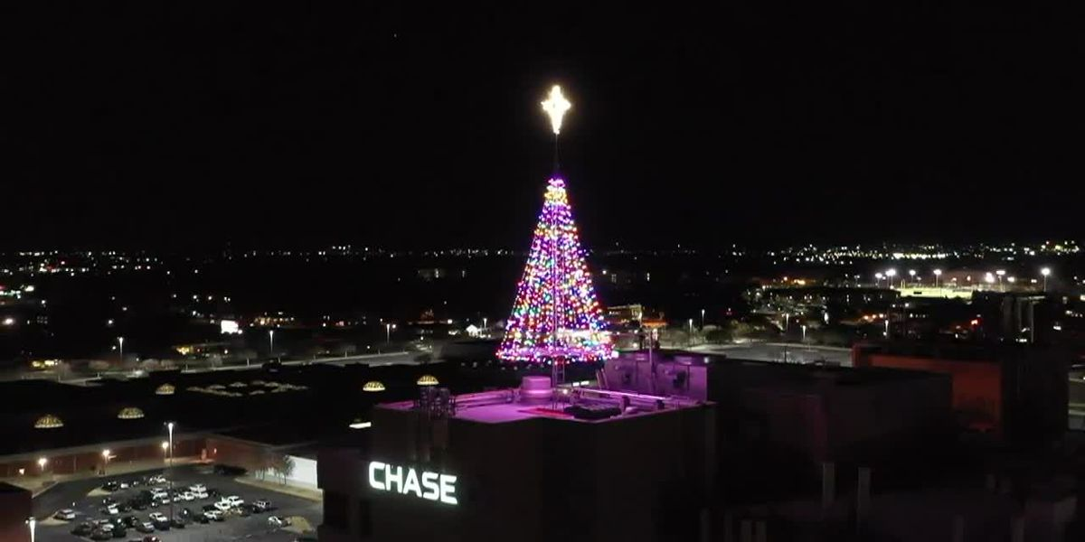 News Channel 6 City Guide: Hospice of Wichita Falls 35th annual Tree of Lights campaign