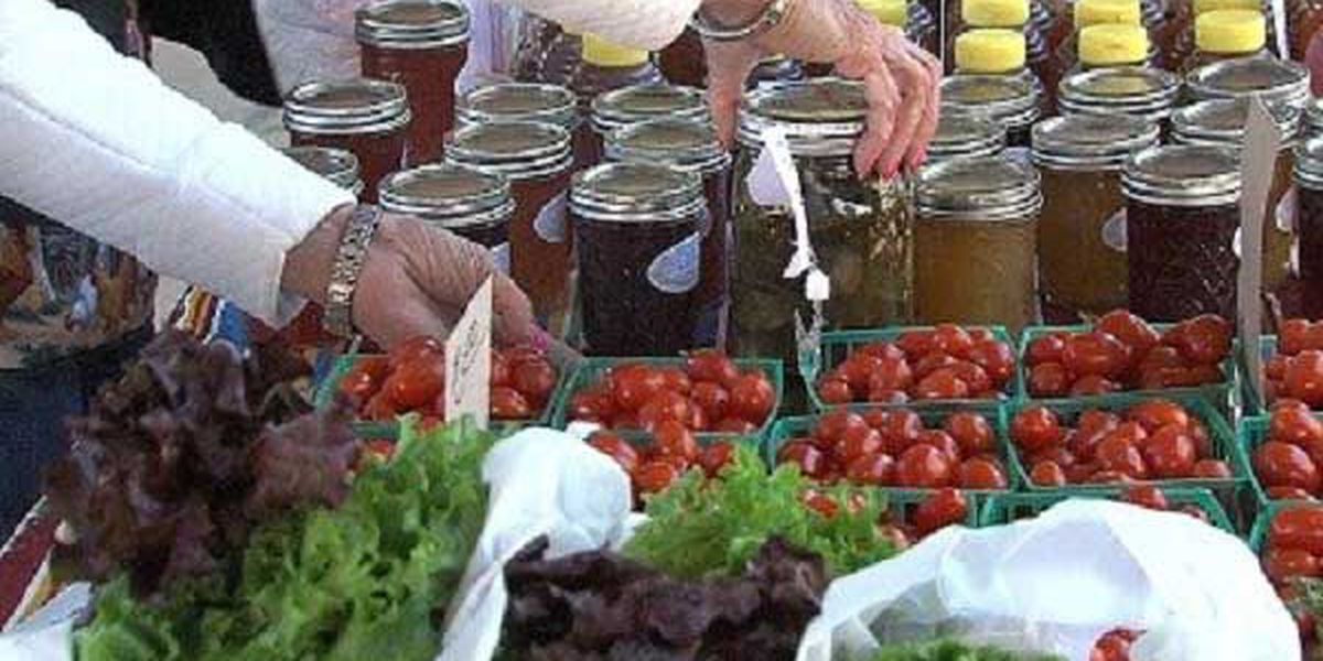 Farm to table program to begin at WFISD