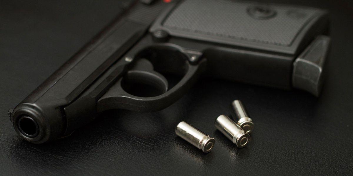 Bill cutting gun license fees advances in Texas Legislature