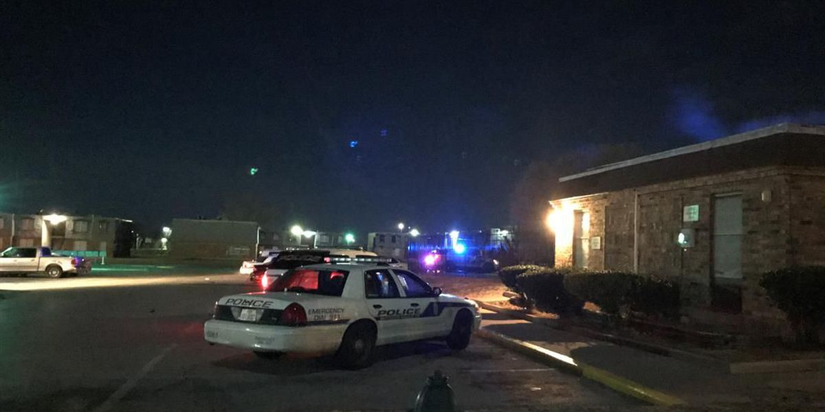 Large police presence at WF apartment complex