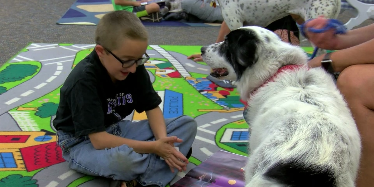 Therapy dogs provide fun afternoon for Wichita Falls children