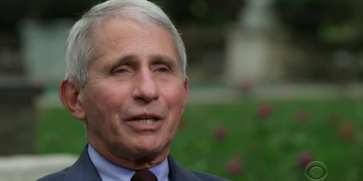 Fauci: 'Absolutely not' surprised Trump got COVID-19