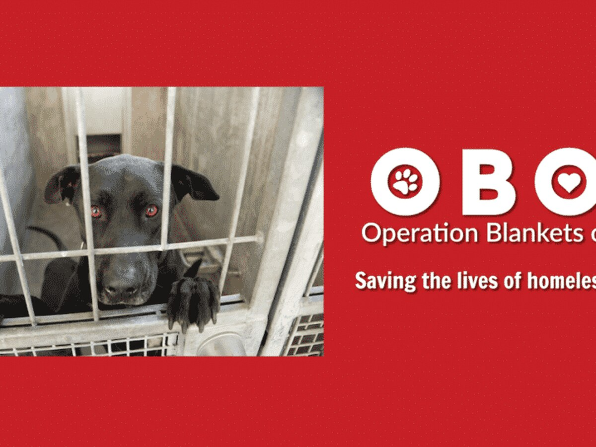 Operation Blankets of Love to benefit local animals in need