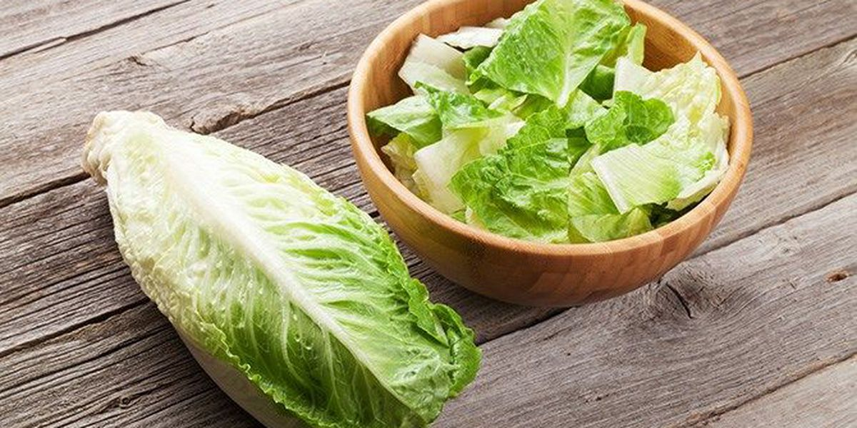 WFISD stops serving lettuce sourced from recent E. coli recall