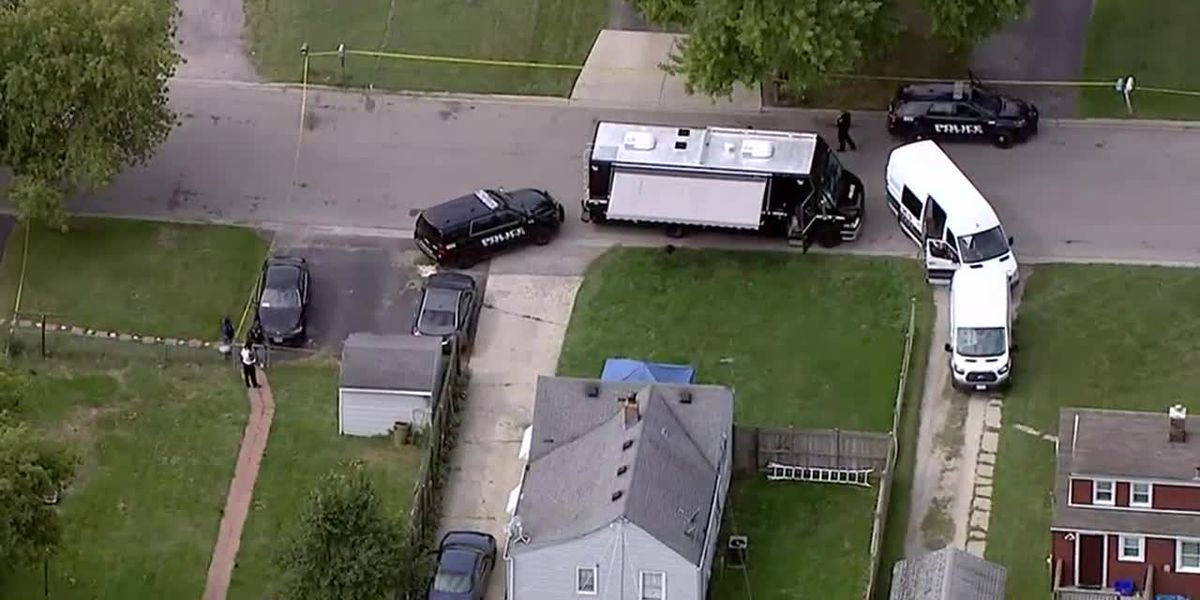 Armed suspects killed in attempted Illinois home invasion