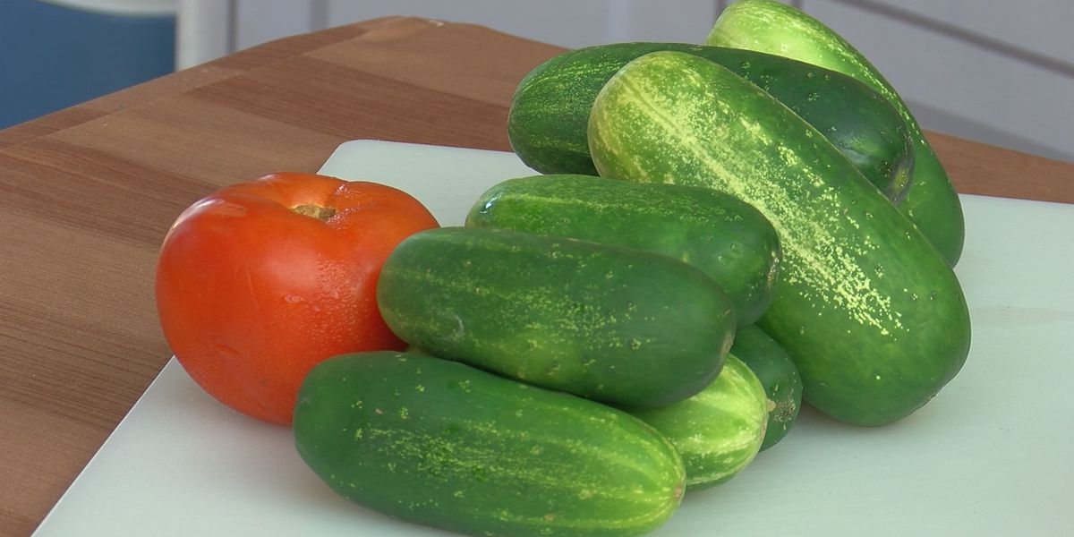WFISD food service members encourage use of local produce